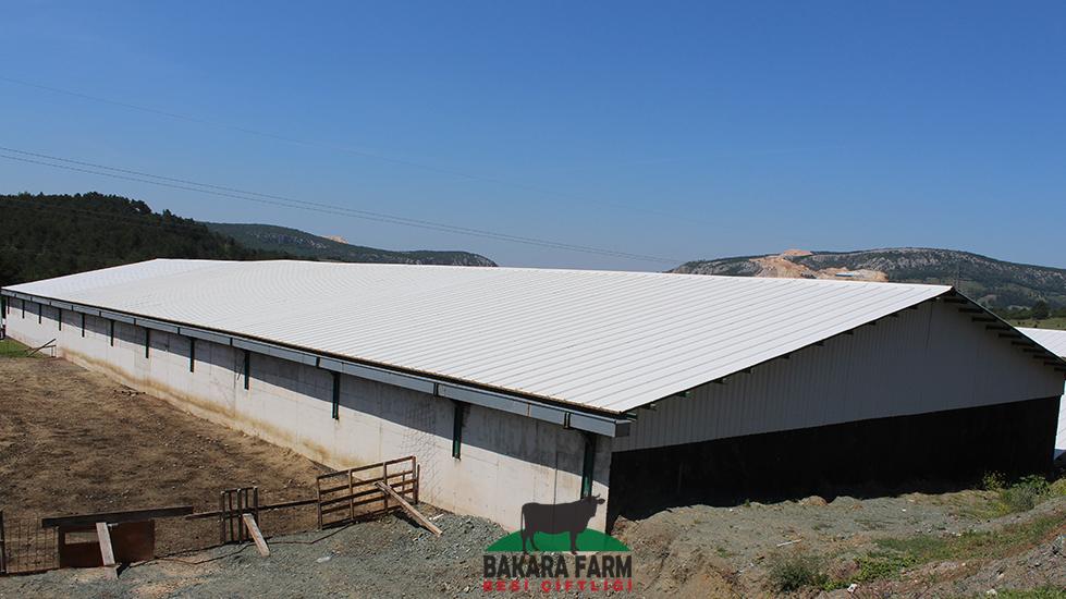 Bakarafarm | CC Holding